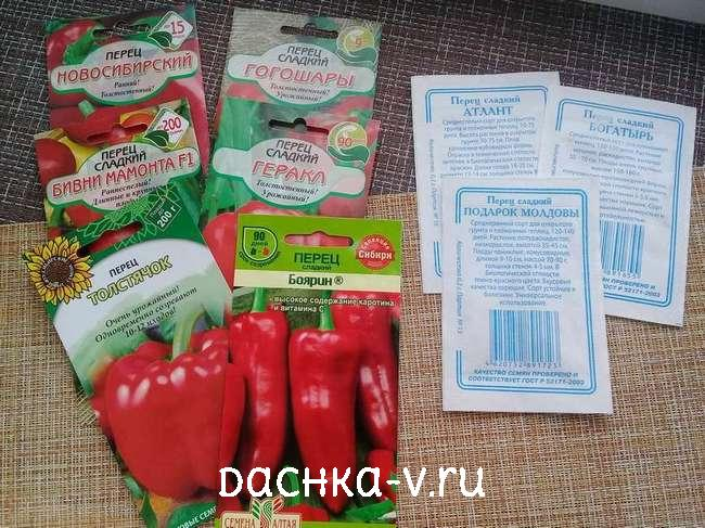 Выращиваем сладкий перец в открытом грунте
